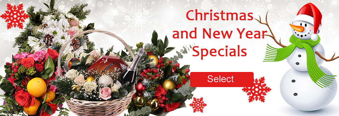 Christmas and New Year Specials